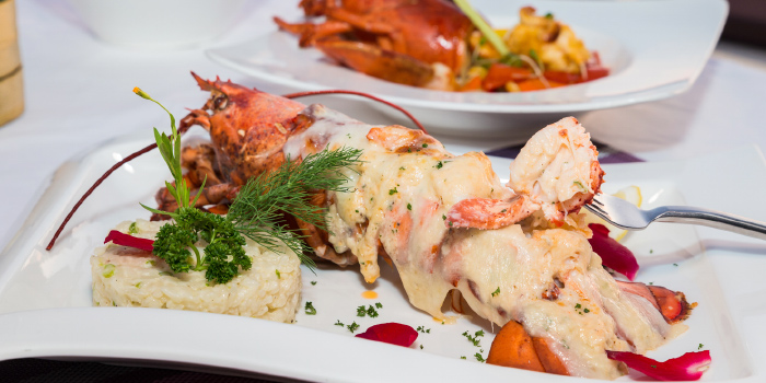 Lobster Thermidor from White Box Restaurant in Patong, Kathu, Phuket, Thailand