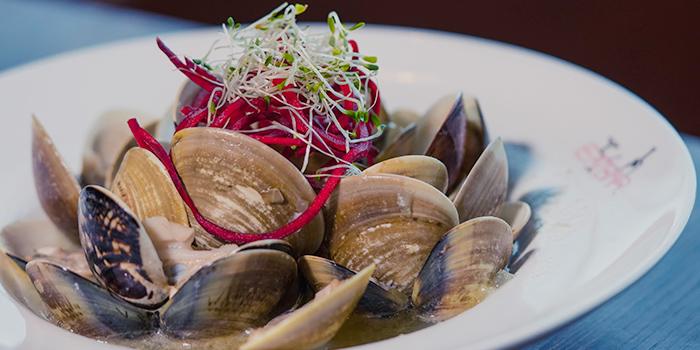Steamed-Seafood, SPARK Bar & Restaurant, Stanley, Hong Kong