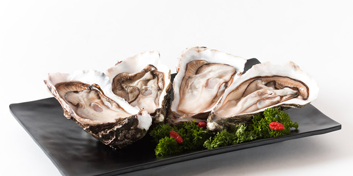 Oysters from Zheng Yuan Wei at Katong Square in East Coast, Singapore