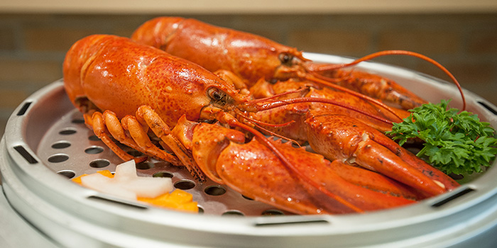 Crawfish Crab from Captain K Seafood Tower (Middle Road) at Midland House in Bugis, Singapore