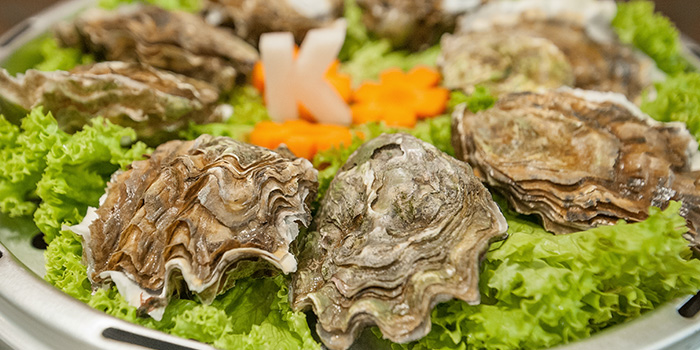 Oysters from Captain K Seafood Tower (Prinsep Street) at Income@Prinsep in Dhoby Ghaut, Singapore