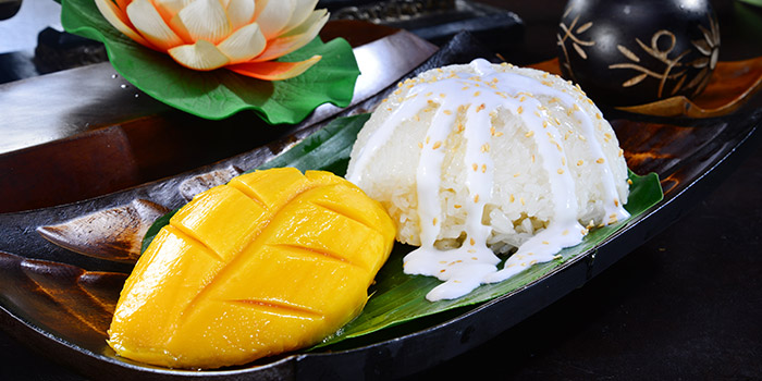 Mango Glutinous Rice from Central Thai at Changi Airport Terminal 2 in Changi, Singapore