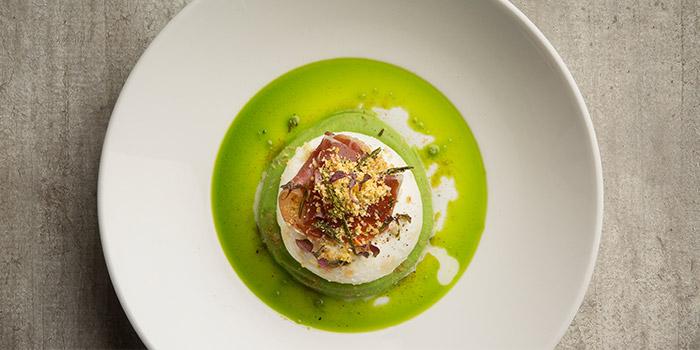 Burrata from Equinox Restaurant in Swissotel The Stamford, Singapore