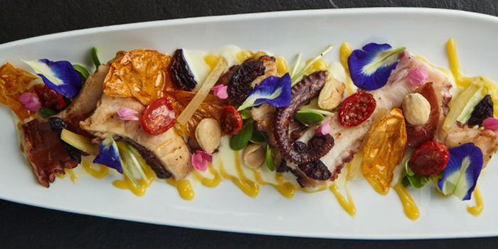 Grilled Octopus from Riedel Wine Bar & Cellar at Gaysorn Village, Bangkok