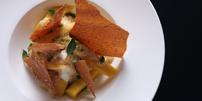 Mango, Coconut and Thai Basil from NUDE Seafood in Marina Bay Financial Centre in Raffles Place, Singapore