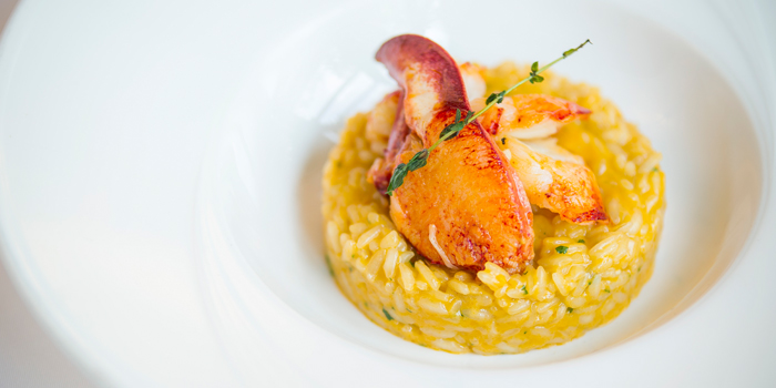 Risotto Lobster from Sensi Restaurant in Narathiwat Soi 17, Bangkok