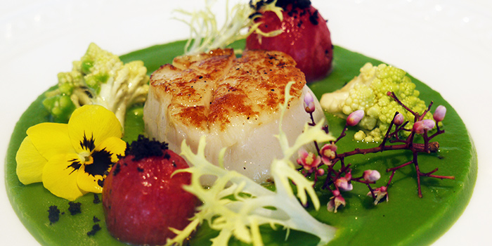 Hokkaido Scallop with Romanesco Confit Cherry Tomatoes (Father