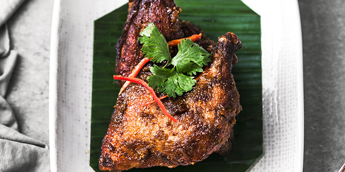 Ayam Sioh from Folklore in Destination Singapore Beach Road in Lavender, Singapore