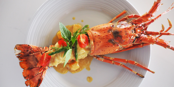 Phuket Lobster with Thai Curry Sauce from etHo
