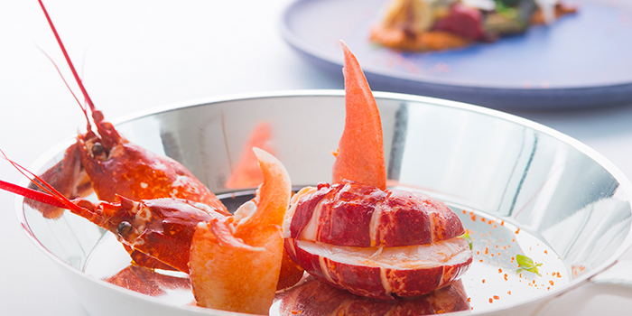 Lobster, Rech by Alain Ducasse, Tsim Sha Tsui, Hong Kong