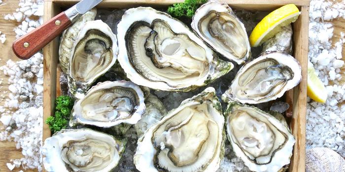 Sea Truffles Seafood Bar