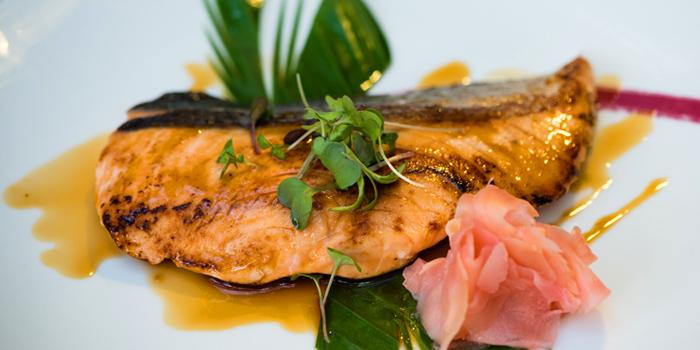 Salmon Teriyaki from Albricias at Chatrium Residence Sathon, Soi Naradhiwas 24, Bangkok
