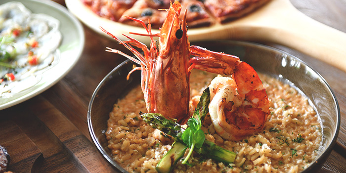 Tiger Prawn Risotto from Blue Lotus Mediterranean Kitchen & Bar in Queentown, Singapore