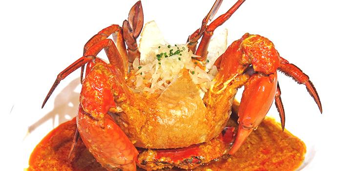 Dancing Crab Shack