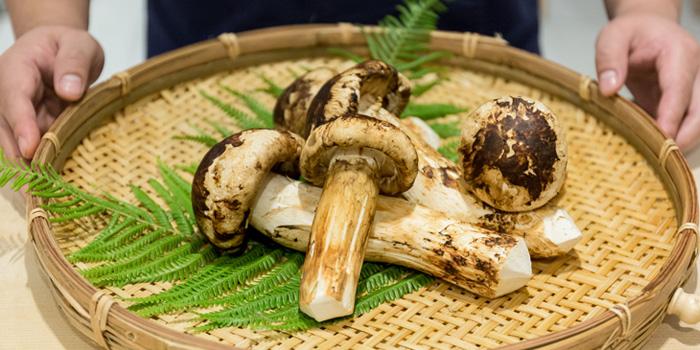 Mushroom from Sushi Niwa at Soi Ruam Ruedi 2, Lumpini, Pathumwan, Bangkok