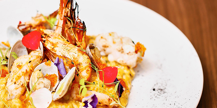 Seafood Risotto from Froth in Raffles Place, Singapore