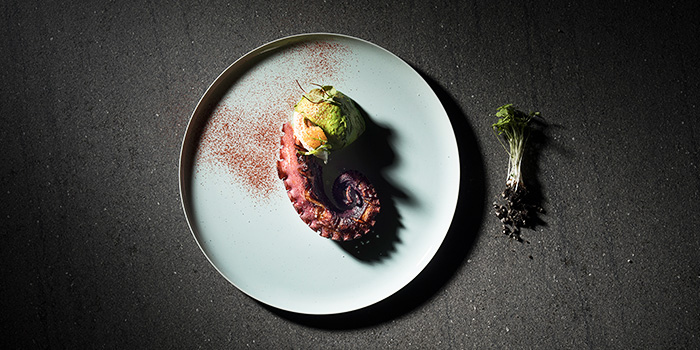 Chargrilled Galician Octopus with Avocado from Racines at Sofitel in Tanjong Pagar, Singapore