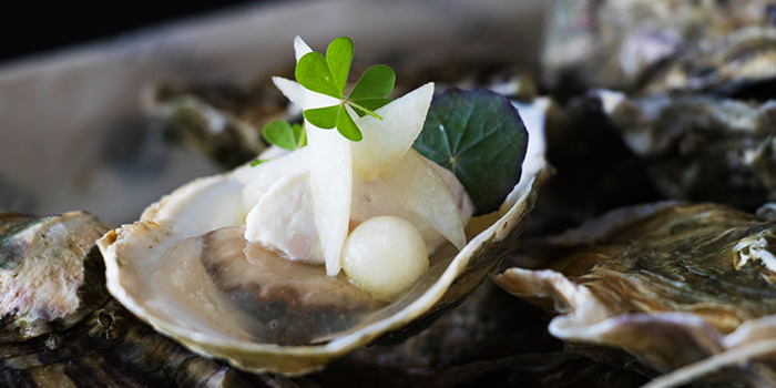Oyster (Christmas Eve) from Saint Pierre in One Fullerton in Raffles Place, Singapore