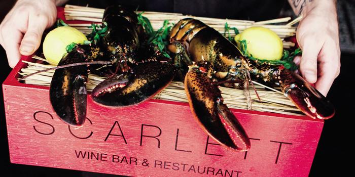 Boston Maine Lobster from Scarlett Wine Bar & Restaurant at Pullman Bangkok Hotel G 37th Floor, 188 Silom Rd, Bangrak, Bangkok
