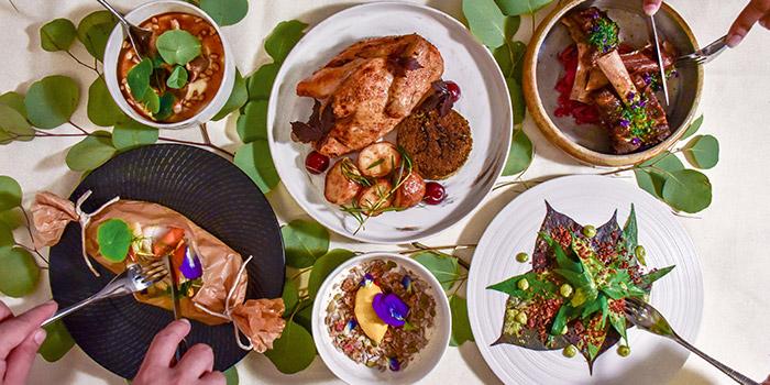 Food Spread from Summerhouse in Seletar, Singapore