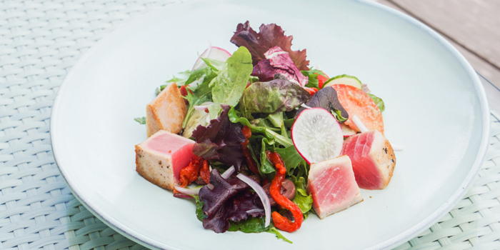 Grilled Tuna Salad from Attitude Rooftop Bar & Restaurant at AVANI Riverside Bangkok Hotel