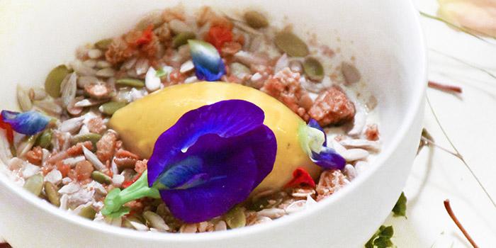 Natural Yoghurt from Summerhouse in Seletar, Singapore