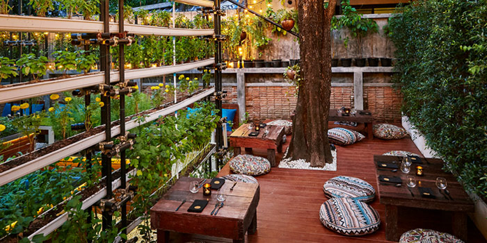 Outdoor Area from Haoma at Sukhumvit Soi 31 Wattana, Bangkok