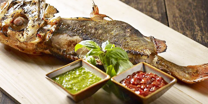 Charcoal Grilled New Zealand Sea Perch from 厨神私房菜: The Chinese Kitchen at Bendemeer in Jalan Besar, Singapore