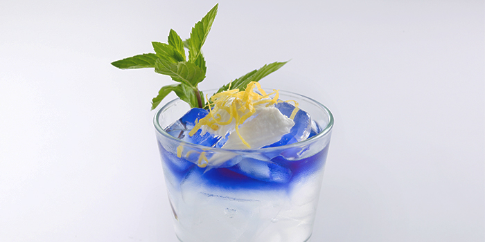 Iced Coconut Mint with Butterfly Pea Flower from Elemen @ HarbourFront Centre in Harbourfront, Singapore
