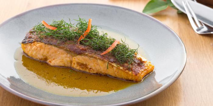Salmon Crust Curry from Twilight Sky at The SIS Kata, Phuket, Thailand