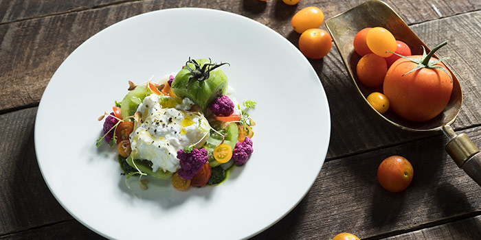 Burrata from Cook & Brew at The Westin Singapore in Marina Bay, Singapore