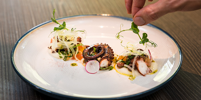 Grilled Octopus from the Cliff in Sentosa, Singapore
