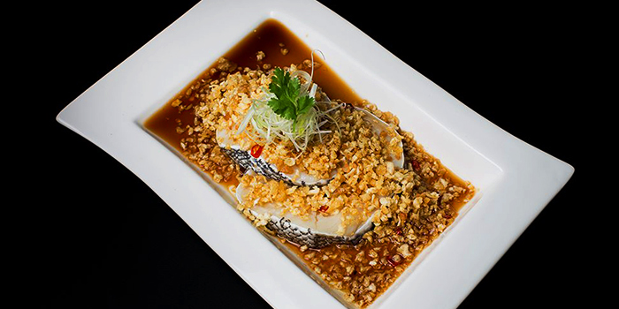 Sea Perched Fillet with Steamed Radish from Dragon Tooth Gate 龍牙門 in Telok Blangah, Singapore