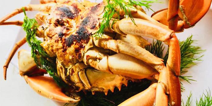 Crab from SHAO in Kembangan, Singapore