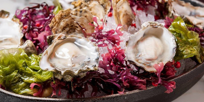 Oysters from db Bistro & Oyster Bar in The Shoppes at Marina Bay Sands, Singapore