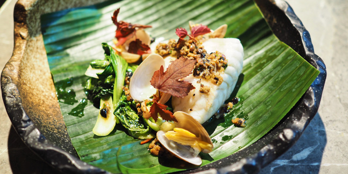 Steamed Pearl Grouper from Open Farm Community in Dempsey, Singapore