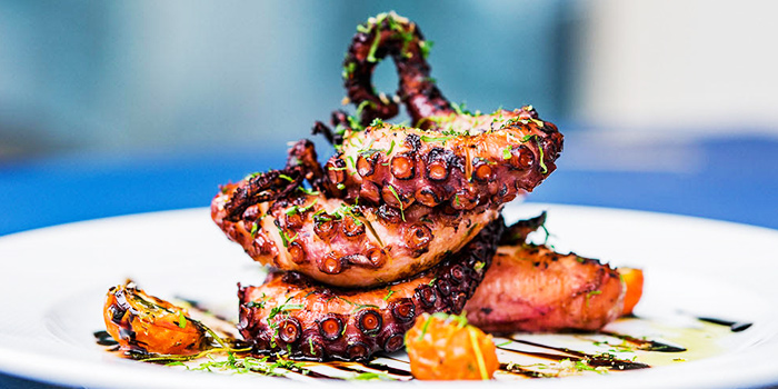 Grilled Octopus from Alati Divine Greek Cuisine in Tanjong Pagar, Singapore