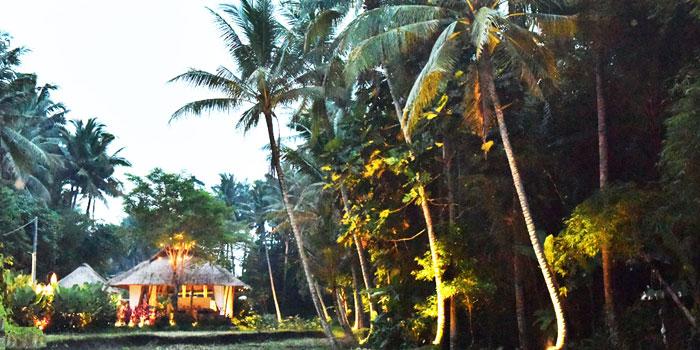 Exterior 1 at Sacred Rice, Bali