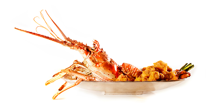 Deep fried Boston Lobster, Dragon Gate Beijing Private Kitchen, Causeway Bay, Hong Kong