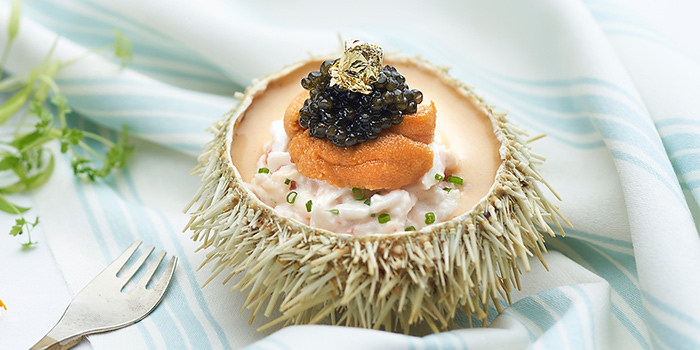 Japanese Sea Urchin and Alaskan Crab from Brasserie Les Saveurs at St. Regis Singapore in Tanglin, Singapore