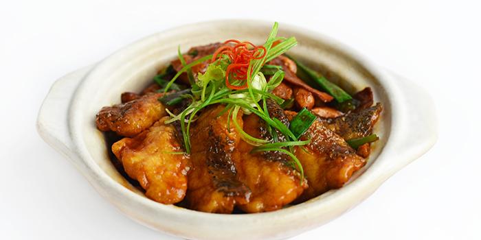 Braised Garoupa from Full of Luck Restaurant in Holland Village, Singapore