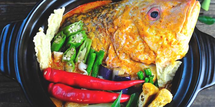 Curry Fish Head from Jiak Modern Tzechar in Bukit Timah, Singapore