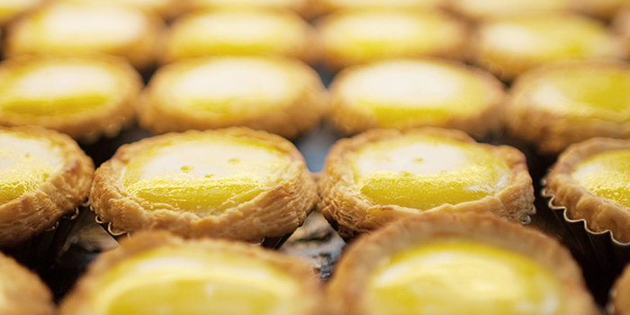 Egg Tarts from Honolulu Cafe (The Centrepoint) at The Centrepoint in Orchard, Singapore