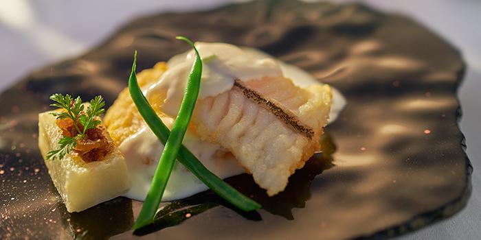 Wok seared Garoupa Fillet with Minced Shirmp and Cream in Homemade XO Chili Sauce, Yan Toh Heen, Tsim Sha Tsui East, Hong Kong