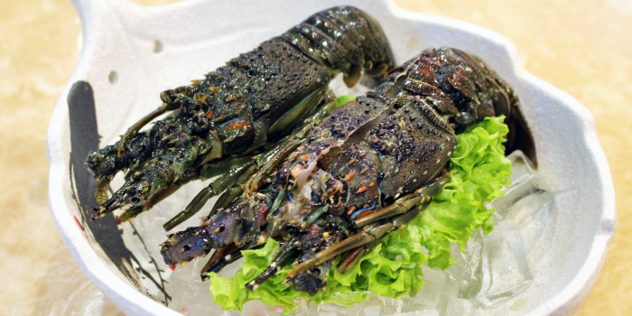 Lobster from King of Hot Pot at Oasis Terraces in Punggol, Singapore