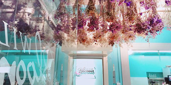 Interior of Wild Blooms in Serangoon, Singapore