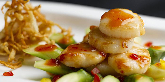 Scallops at Tien Court at Copthorne King